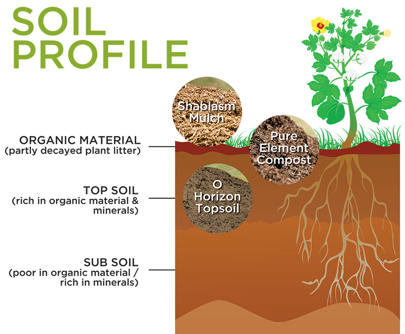 SoilProfile